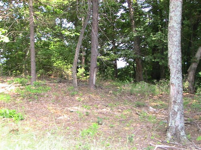 17_smalltract3homesite.jpg